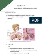 Sistem Pernafasan Basic