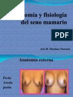 Anatomia y Fisiologia Del Seno Mamario