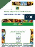 Palestra Elson - MAPA.pdf