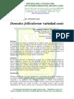 Demodex Folliculorum Variedad Canis