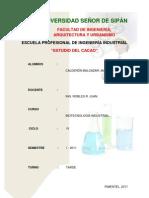 cacao y derivados.docx
