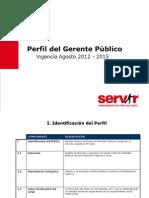 Perfil Generico Gerente Publico
