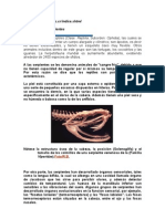 Biología de las serpientes