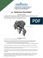 La Sindrome Piramidale - Riabilitazione - Fisioterapia - Ernia - Schiena