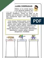 Ficha-de-ortografíaacento