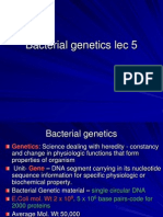 Bact Genetics Lec5