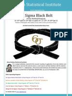 03 Six Sigma Black Belt Dec12-Jan13