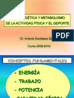 1-bioenergetica -curso2009-2010-1-