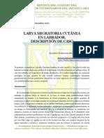Larva Migratoria Cutánea en Labrados. Descripción de un caso