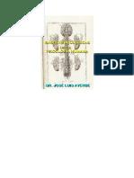 Bases neurológicas de la psicología humana