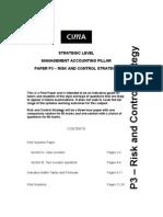 P3_pilot_paper.pdf