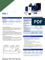 P65-1(4PP)ES(1112)