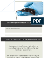 2.Experimentacion Animales