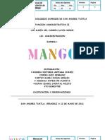 Manual Mango