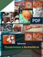 Pseudomona y Burkholderia 2013 Enero