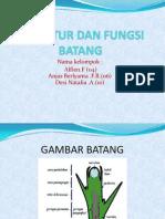 STRUKTUR_DAN_FUNGSI_BATANG.pptx