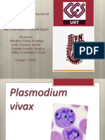 Plasmodium vivax (corregida)