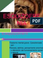 Esquizofrenia DIAPOSITIVAS