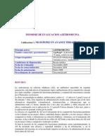 FET_2010_7_I.pdf