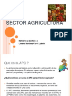Sector Agricultura Diapo