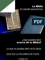001 BIBLIA _panoramico 1