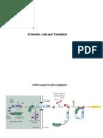 006 Código Genético e Tradução.pdf