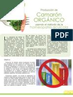 4.3-CamaronOrganico