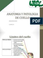 anatomia y patologia de cuello.pptx