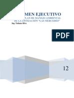 resumen ejecutivox(1)