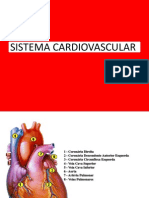 anatomofisiologiadosistemacardiovascular-aula05-090814190125-phpapp01