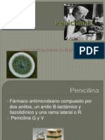 EXPO Penicilinas