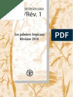 Palmier Tropicaux FAO