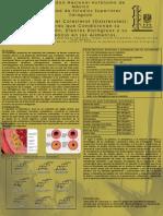 Óxidos del Colesterol (Oxisteroles). Factores que Condicionan su Formación, Efectos Biológicos y su Presencia en los Alimentos