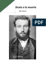Albert Libertad. Artículos