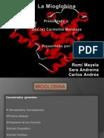 mioglobina-100818124251-phpapp02