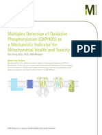 Multiplex Detection of Oxidative Phosphorylation (OXPHOS) as a Mechanistic Indicator for Mitochondrial Health and Toxicity