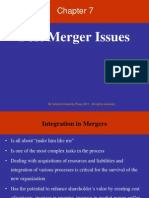 Chapter 7_Post Merger Issues