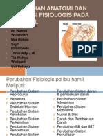 Perubahan Anatomi Dan Adaptasi Fisiologis Pada Ibu Hamil