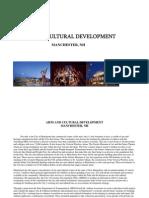 Summary of Arts Plan PDF