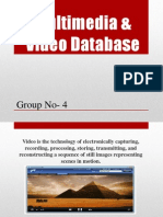 Multimedia & Video Database.pptx