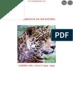 REGIMIENTOS DE INFANTERÍA - GUERRA DEL CHACO 1932 a 1935 - GERALDINO GAMARRA - PARAGUAY - PORTALGUARANI