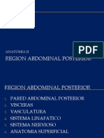 3.5 Region Posterior Del Abdomen (2)