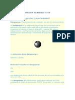 Unidades de Informacion Del Modelo Tcp