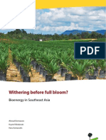 Withering Before Full Bloom_bioenergy Report South East Asia
