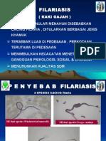 FILARIASIS DISTRIK.ppt