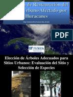 Datos Para Plantacion de Arboles