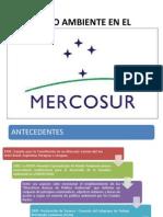 Medio Ambiente en El Mercosur