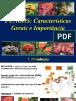1797_Fungos - Caracteristicas Gerais e Importancia
