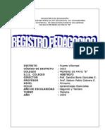REGISTRO PEDAGOGICO JJRA