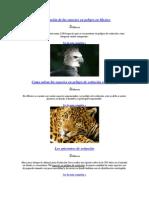 Clasificación de las especies en peligro en Mexico